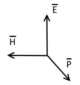 E H P